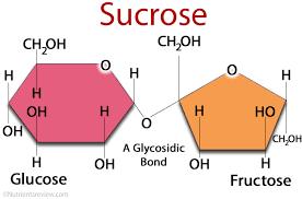 sucrose structure chemical formula image