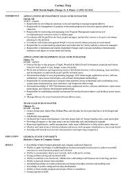 Scrum Master Resume Sample Lead Scrum Master Resume Samples Velvet Jobs 17