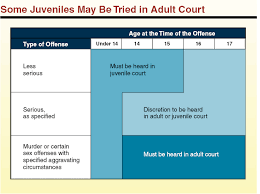 should juveniles be tried as adults pros essay write an essay should juvenile offenders be <em>tried< em> as <em>