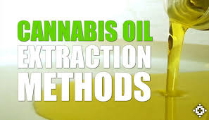 Image result for cannabinoid extraction