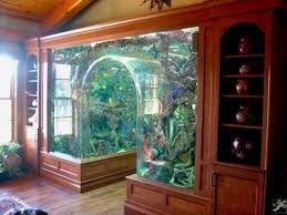 Funny Fish Tank Decorations Cute Fish Tank Decorations Decor Ideas