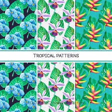 Pattern Collection Custom Free Vectors Tropical Summer Pattern Collection Patterns