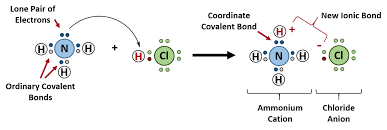 figure 4 4 formation of ammonium chloride when the ammonium ion nh4 is formed the fourth hydrogen shown in red is attached by a coordinate covalent