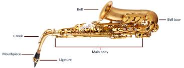 Saxophone Size Chart A Guide To Buying Your First Saxophone John Packer