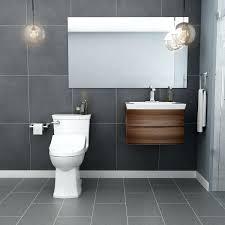 Extended Bathroom Vanity Light Bathroom Counter Over Toilet Hannahleigh