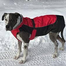 Amazon.com : Alpine <b>All</b>-Weather <b>Dog Coat</b> - Red & Black (M (16 ...
