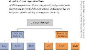 The Ambidextrous Organization