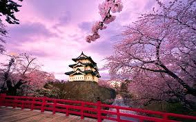 Blooming The Cherries Hirosaki Castle Hirayama Castle Built