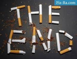 Влияние курения на организм человека Блог о здоровье Физ Ра com Влияние курения на организм человека