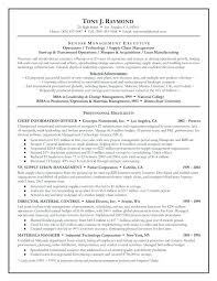 Executive Summary Resume Interesting Example Summary Resume Ideas Of Executive Summary Resume Sample