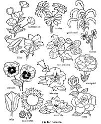 Small Picture Flower Alphabet Coloring Pages Coloring Pages