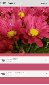 match paint colorRemodelaholic  Apps to Match and Find Paint Color Palettes from a