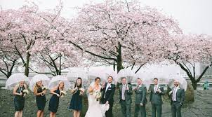 cherry blossom wedding photos yasmin khajavi photography