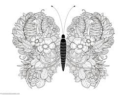 Small Picture Butterfly Coloring Pages 1111