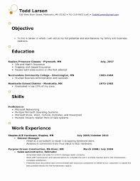 Sales Manager Objective Statement 67 Elegant Images Of Sample Resume Area Sales Manager