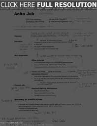 Undergraduate Student Resume Example For College Objective Curre Sevte