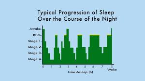 Ideal Sleep Cycle Chart The Sleep Weight Loss Connection Psychology Today