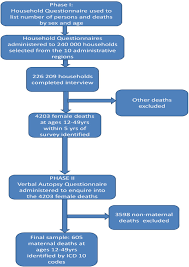 Flow Chart On Data Collection Process Download Scientific