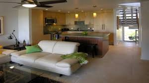 condo living room interior design. kitchen small condo ideas living room design interior n