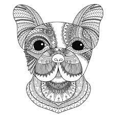 Hidden Animali Disegni Da Colorare Per Adulti Con Mandala Animali Da