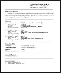 Resume Title Examples For Mba Freshers