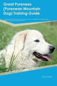 great pyrenees dog house plans unique great pyrenees guard dog training guide great pyrenees