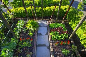 before you plant your vegetable garden