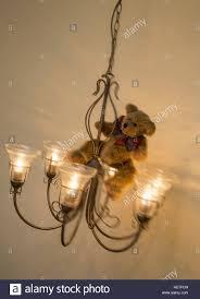 Teddybär Trägt Ein Schwingen Von Einem Kronleuchter