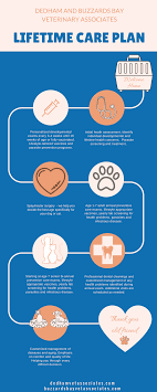Lifetime Care Plan - Dedham Veterinary Associates
