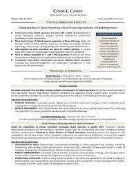 Amazing Resume Blaster Medical Sales Gallery Example Resume