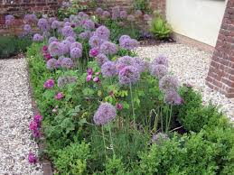 Small Picture How To Design A Cottage Garden Markcastroco