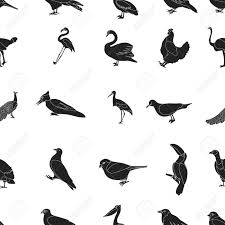 Bird Pattern New Bird Pattern Icons In Black Style Big Collection Of Bird Vector