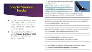 sentence structures and vocabulary for cause and effect essay 10