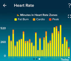 My Fitbit Charts Weight Loss And Health Steps Heart Rate