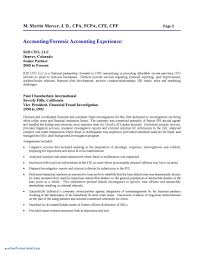 Forensic Accounting Report Template New Audit Report Template