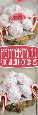 For Christmas Best 25 Christmas Cookie Recipes Ideas On Pinterest Holiday
