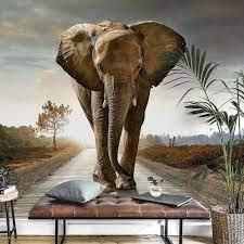 Elephant, Wall murals, Popular wallpaper