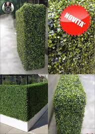 Boxwood 3d contact us for a quote