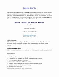 Sous Chef Sample Resume Awesome Pics Of Chef Resumete Concept Ideas Junior Sous Cv Sample 15