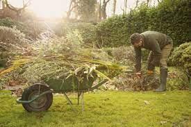 a wheelbarrow or garden cart