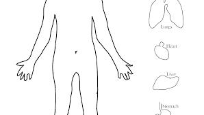 Printable Body Outline Momchilovtsi Info