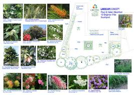 Small Picture Native garden design