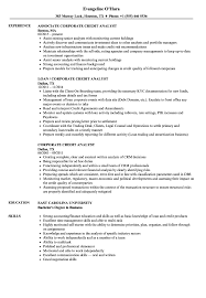 Credit Analyst Resume Example Corporate Credit Analyst Resume Samples Velvet Jobs