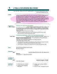 Resume Profile Examples Resume Templates