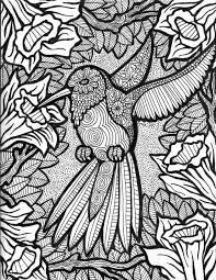 Small Picture 1180 best Adult ColouringOwlsBirds Zentangles images on