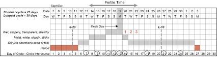 Planning Pregnancy Fertility Uk