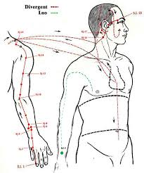 Diagrams Points Saibankan Atemi Jutsu Institute