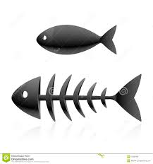 картинка скелет рыбы