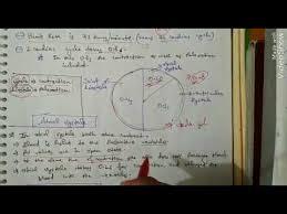 sample fce essay pt3 speech