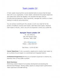 Resume Samples For Warehouse Jobs Team Leaderume Sample Sales Cv Production Samples Impressive Leader 42
